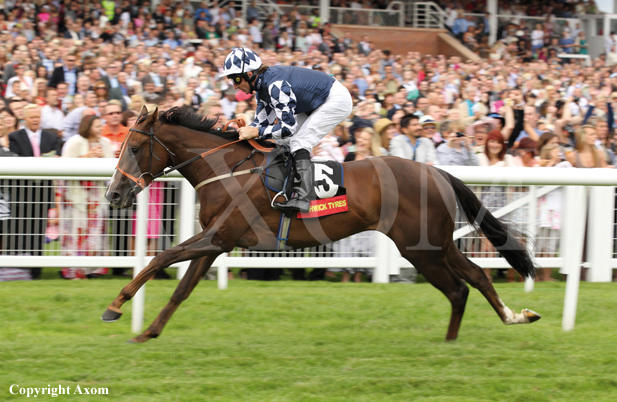 Dreamwriter gets off to a perfect start at Newbury - August 2011